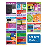 """Computer Programming Posters - Set of 9 