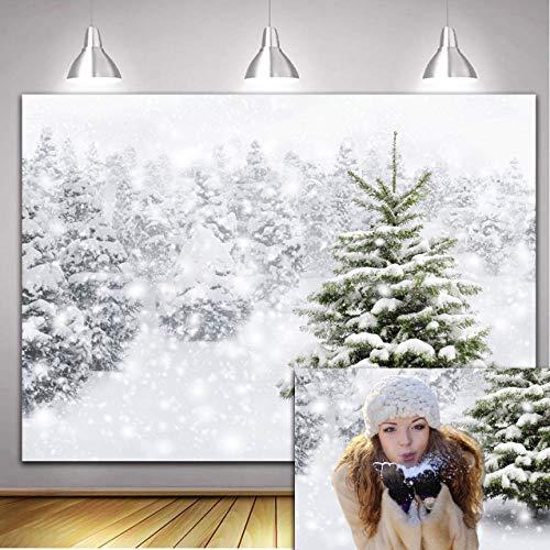 Vacaciones Invierno Frost Bosque Naturaleza País de Las Maravillas Telón de Fondo Blanco Nieve Árbol Puente...