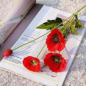 æ— 10 PCS 23 Inch Artificial Poppy Bouquet Four Branches Silk Poppy Bouquet Fake Poppy Flowers with Stems for Home Party Wedding Decorations, Red