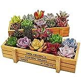 Skiesoar - Caja rectangular de madera para ventana, maceta de madera para plantas y jardines, 22,5 x 8,4 x 4,1 cm