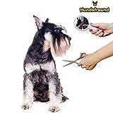 Hundescheren-Set mit Effilierschere zur Fellpflege für alle Hunde | Scheren aus Edelstahl mit abgerundeter Spitze - 4
