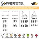 Sonnensegel Sonnenschutz Garten | UV-Schutz PES Polyester wasser-abweisend imprägniert | CelinaSun 0011683 | Dreieck rechtwinklig 3 x 3 x 4,25 m creme-weiß - 5