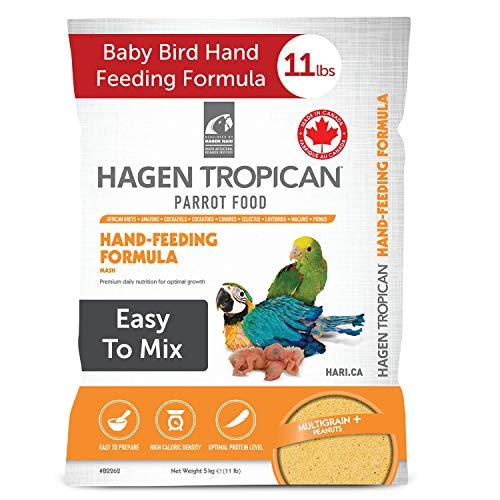 baby bird food formula - 3