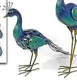 Gartenvogel Deko-Vogel Pfau 'Caruso' aus Metall 57 x 68 x 24 cm