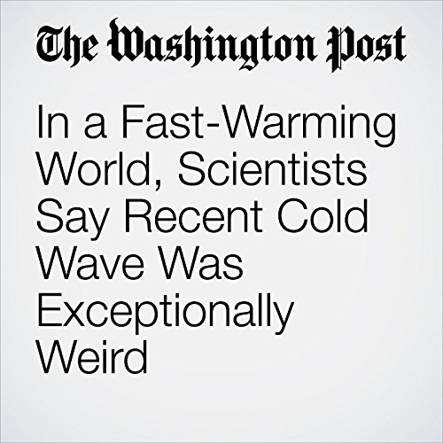 In a Fast-Warming World, Scientists Say Recent Cold Wave Was Exceptionally Weird copertina