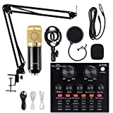 Condenser Microphone Bundle, ALPOWL BM 800 Condenser Microphone Kit with Live Sound Card, Adjustable Mic Stand, Metal Shock Mount and Double-Layer Pop Filter for Studio Recording & Broadcasting (Gold)