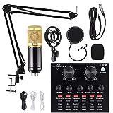 Condenser Microphone Bundle, ALPOWL BM 800 Condenser Microphone Kit...