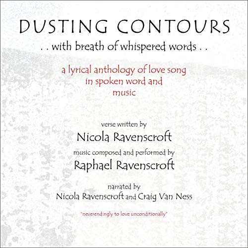 Dusting Contours audiobook cover art