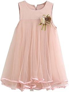 Kleider Mädchen, GJKK Kleinkind Mädchen Chiffon Kleider Ärmellos Rundhals Drape Kleid Hochzeit Party Prinzessin Kleid A-Linie Prinzessin Maedchen Kleid Sommerkleid + Brosche