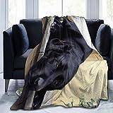 Tmvfpyr Labrador Blanket