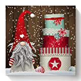 Paint by Number Kit On Canvas with Frame, Santa Claus Cartoon Christmas Gnome Gifts DIY Acrylic Drawing Paintwork Decoration for Adults Beginner, 16'x16'