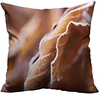 YouXianHome Home DecorCushion Covers Frost Leaves Comfortable and Breathable(Double-Sided Printing) 17.5x17.5 inch