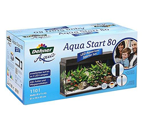 Dehner Aqua Aquarium Starterset 80, ca. 81 x 36 x 45 cm, inkl. Futter und Pflegeprodukten