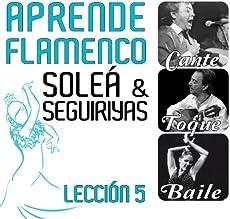 Aprende Flamenco. Soleá y Seguiriyas. Lección 5