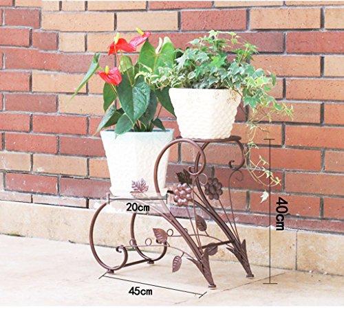 Home - Flower shelf ZWD Double Couche Support de Fleurs, Support de Plante de Fer Noir Facile d'entretien Portant Forte étagère de Stockage de Magasin de vêtements d'intérieur Produits