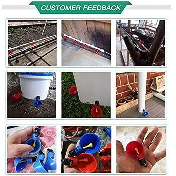 Lucky Farm 12 Pcs Automatique Oiseau Abreuvoir Kits Volaille Abreuvoirs Tasses avec Noix Arrosage Système pour Poulet Caille Pigeon (Violet)