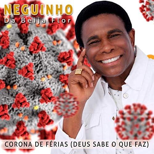Neguinho Da Beija Flor