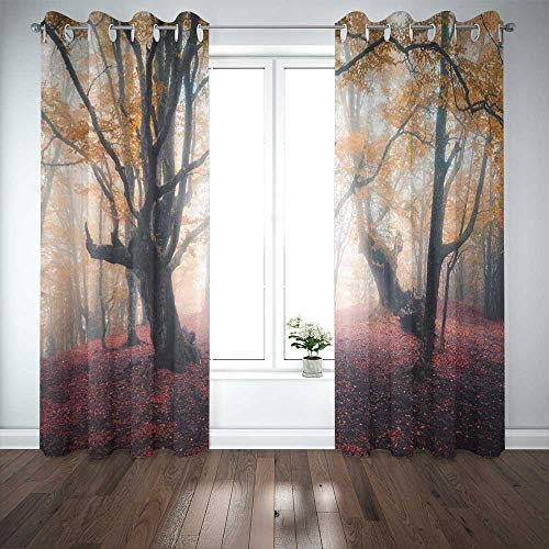 Musesh 52X63 Inch Curtains 2 Panel Cool Window Curtains Blackout Curtain Panels Window Panel Curtains Beautiful Fairy in Fog Autumn Colorful Landscape Door Curtain Panels for Bedroom Living Room