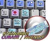 STEINBERG CUBASE / NUENDO GALAXY SERIES STICKERS 12X12 SIZE
