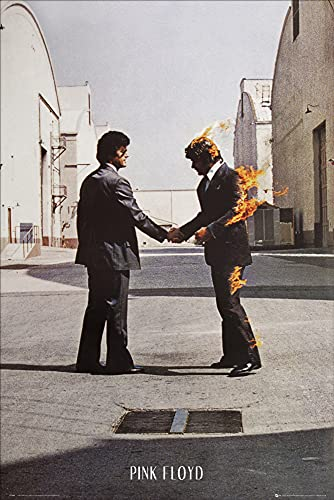 1art1 Pink Floyd - Wish You Were Here Poster Stampa (91 x 61cm)