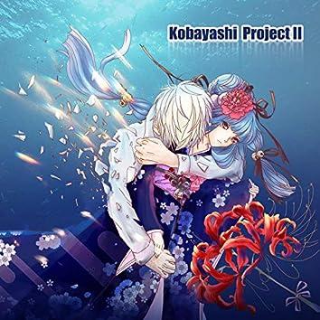 Kobayashi Project 2