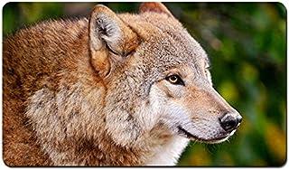 オオカミクローズアップ、捕食者 パターンカスタムの マウスパッド 動物 デスクマット 大 (60cmx35cm)