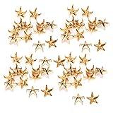 Remaches de estrella, 200 piezas Remaches de estrella Uñas de garra de estrella de 5 puntas Bolsas de bricolaje Sombreros Accesorios de decoración 10 mm para cinturón de cuero Bolsa Sombrero (Oro)