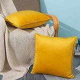 LIAOXIONG Housse de Coussin,Taies d'oreiller en Velours, 2 taies d'oreiller décoratives de canapé, Coussins de lit et de canapé d'intérieur, oreillers décoratifs (Jaune, 50x50cm)
