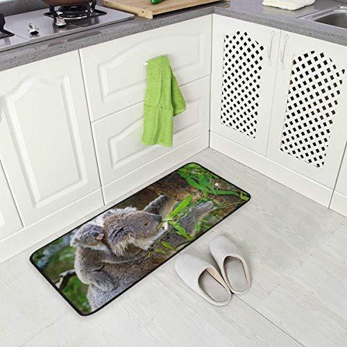 SENNSEE Koala Animal australisches graues Fell Küche Mats Indoor Outdoor Fußmatte Anti-Rutsch Küchenteppich Comfort Kleine Bodenmatte für zu Hause, 99,1 x 50,8 cm