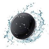 LEZII BT531 Bluetoothスピーカー 防水耐衝撃 コンパクトで持ち運びに便利 Micro SDカード対応 USB充電 ワイヤレス TWS機能でステレオサウンド 8-12時間連続再生 マイク (黒)