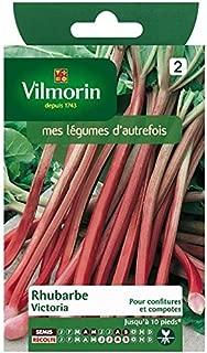 Amazon.es: Vilmorin - Jardinería: Jardín