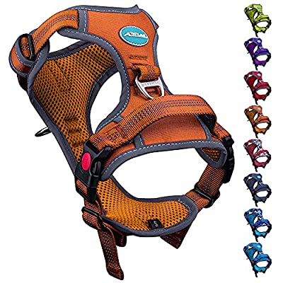 ThinkPet No Pull Harness Breathable Sport Harness with Handle-Dog Harnesses Reflective Adjustable for Medium Large Dogs,Back/Front Clip for Easy Control M Orange by ThinkPet