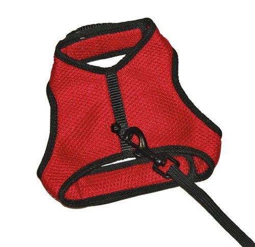 Kerbl 82652 Sport Katzengeschirr rot mit flexibler Leine 110 cm