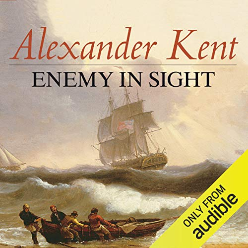 Enemy in Sight audiobook cover art