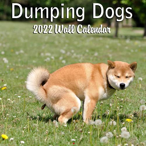 Blue Wolf Calendar Company DUMPING DOGS 2022 Monthly Wall Calendar with Four Bonus Months from 2021 16-Month Calendar 12' x 24' (when open) 12' x 12' (when closed) Thick Sturdy Paper Gag Gift