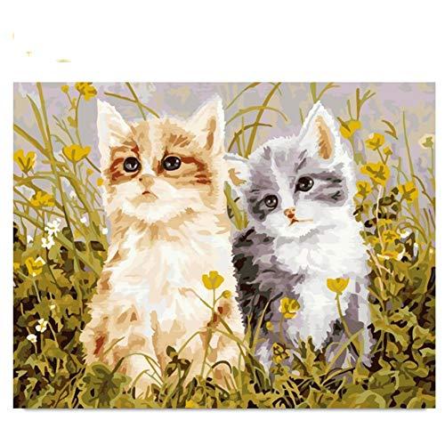 GKJRKGVF kat schilderen op nummer, doe-het-zelf wilde bloemen schilderij handwerk olieverfschilderij kunst kleur woningcultuur
