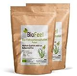 BioFeel - Bio Flohsamenschalenpulver, 600g