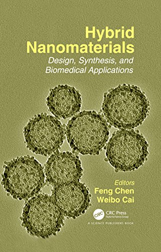 Hybrid Nanomaterials: Design, Synthesis, and Biomedical Applications (English Edition)