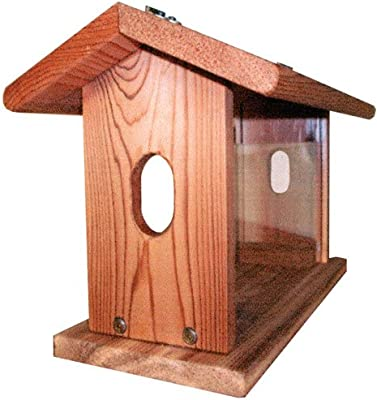 Stovall 11FH Bluebird Feeder with Hanging Chain