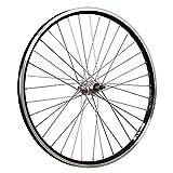 Taylor-Wheels 26 Pouces Roue arrière vélo ZAC2000 5-8 Roue Libre à vis Noir