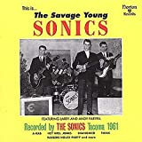 Songtexte von The Sonics - This Is... The Savage Young Sonics