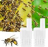 Taza de cría de Apicultura, 20 Unids/Set Taza de cría de Abeja Reina Jaula de plástico King Bee Herramientas de Apicultura Aislador Herramientas de cría de Apicultura Caja de Insecto