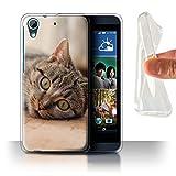Stuff4 Phone Case for HTC Desire 626 Popular Cat/Feline