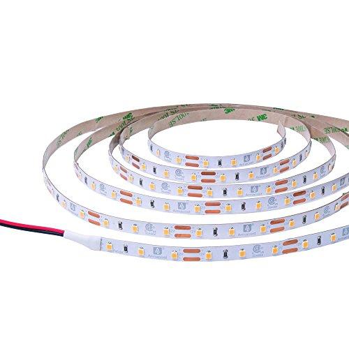 Armacost Lighting 132220 RibbonFlex Pro LED Tape Light 2700K, 12 ft, 12 Ft
