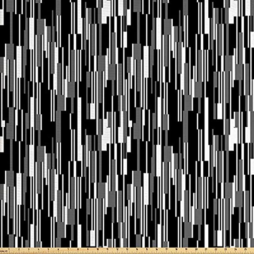 Ambesonne Black and White Fabric by The Yard, Barcode Pattern Abstraction Vertical Stripes in Grayscale Colors, Decorative Fabric for Upholstery and Home Accents, 1 Yard, Black Grey White