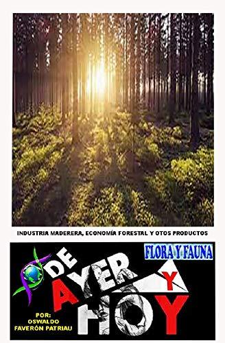 Industria maderera, economía forestal y otros productos