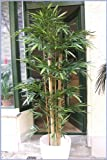 Künstlicher Giant Bambus 1