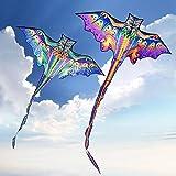 2pcs / Set 3D Dragon Kite para niños Kite Nylon Toys Fly Kites niños Kite Line weifang Bird Kite Factory ikite Eagle