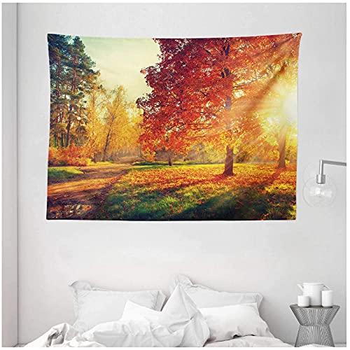QJIAHQ Tapiz de otoño Día brumoso Vibrante en el Bosque Rayos de Sol Árboles Follaje Hojas caídas Calma Colgante de Pared para Dormitorio Sala de Estar Dormitorio 200X150cm