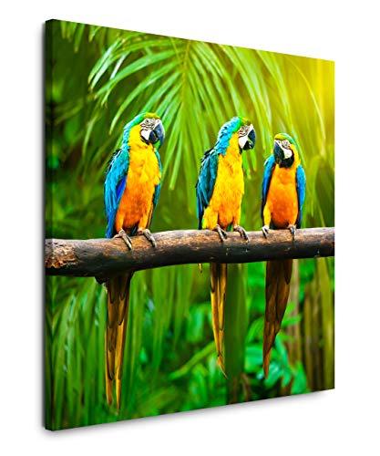 EAUZONE GmbH Papageien auf einem AST 60x60cm Wandbild auf Leinwand, Kunstdruck Moderne Bilder